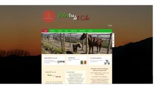 Palestradelcibo Online